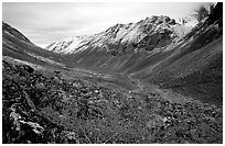 Aquarius Valley near Arrigetch Peaks. Gates of the Arctic National Park ( black and white)
