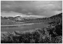 Alatna River valley near Circle Lake, evening. Gates of the Arctic National Park, Alaska, USA. (black and white)