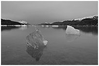 Translucent iceberg near Mc Bride glacier, Muir inlet. Glacier Bay National Park, Alaska, USA. (black and white)