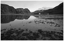 Mud flats above White Thunder ridge, Muir inlet. Glacier Bay National Park ( black and white)