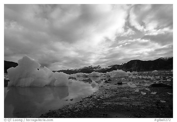 Iceberg, Mc Bride inlet. Glacier Bay National Park (black and white)