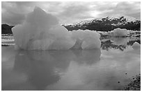 Iceberg, Mc Bride inlet. Glacier Bay National Park ( black and white)