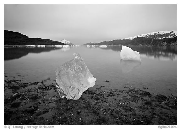 Beached translucent iceberg and  Muir inlet at dawn. Glacier Bay National Park (black and white)