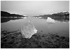 Beached translucent iceberg and Muir inlet at dawn. Glacier Bay National Park ( black and white)