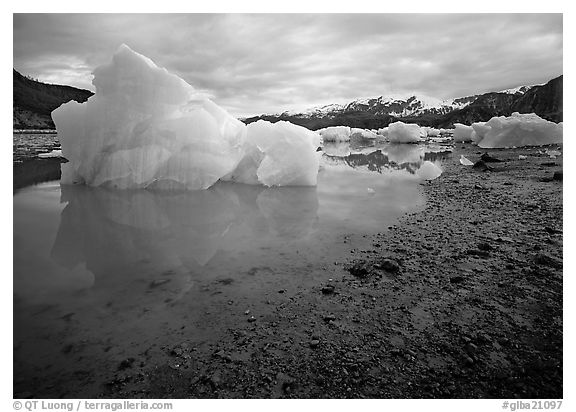 Blue icebergs beached near Mc Bride Glacier. Glacier Bay National Park (black and white)