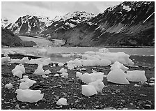 Beached icebergs and McBride Glacier. Glacier Bay National Park ( black and white)