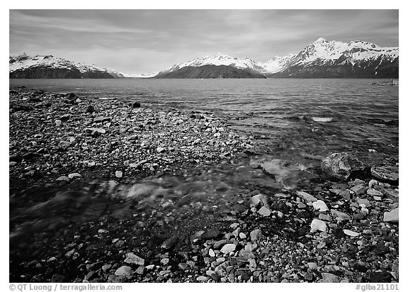 Stream and West arm. Glacier Bay National Park (black and white)