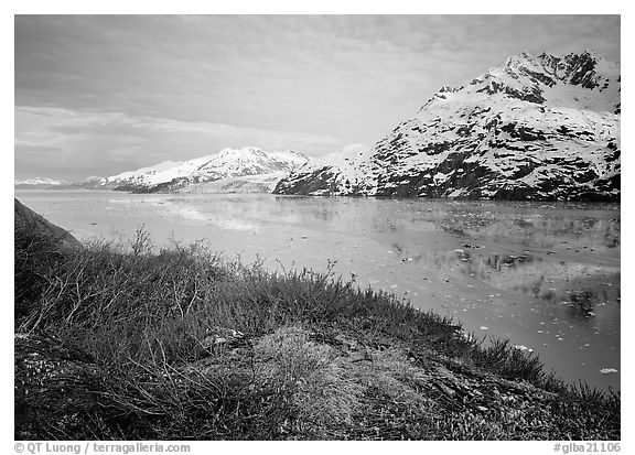 Snowy mountains and icy fjord seen from high point, West Arm. Glacier Bay National Park (black and white)