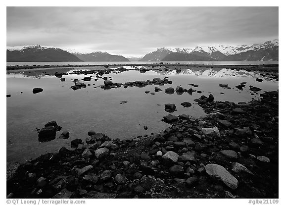 Accross the West arm from near Scidmore bay. Glacier Bay National Park (black and white)