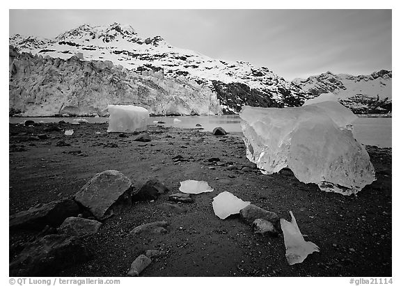 Beach, translucent iceberg, Lamplugh Glacier. Glacier Bay National Park (black and white)