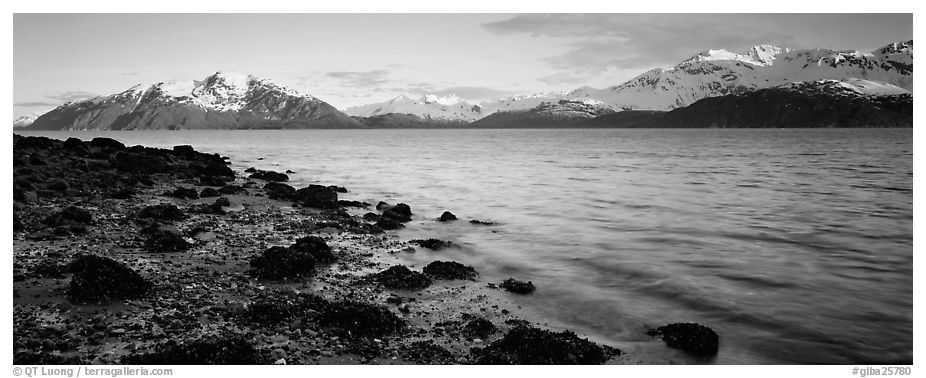 Fjord landscape with mountains rising above inlet. Glacier Bay National Park (black and white)