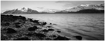 Fjord landscape with mountains rising above inlet. Glacier Bay National Park (Panoramic black and white)