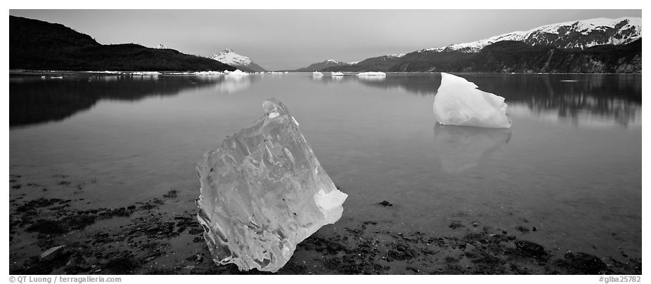 Transluscent iceberg at dawn. Glacier Bay National Park (black and white)