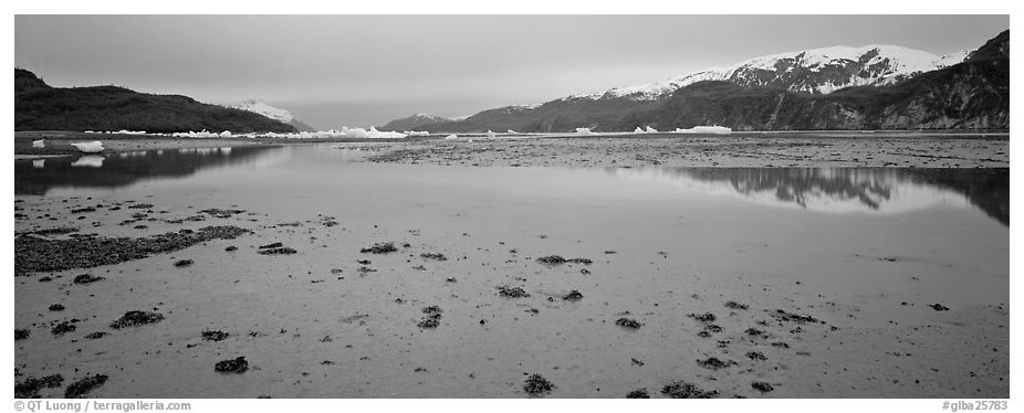 Tidal flat with icebergs in the distance. Glacier Bay National Park (black and white)