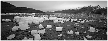 Landscape with beached icebergs. Glacier Bay National Park (Panoramic black and white)