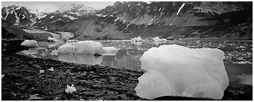Glacial scenery with icebergs and glacier. Glacier Bay National Park (Panoramic black and white)