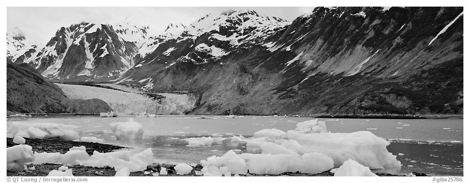 Coastal scenery with icebergs and tidewater glacier. Glacier Bay National Park (black and white)