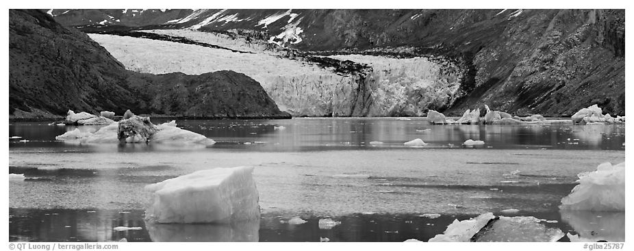 Glacier front and inlet. Glacier Bay National Park (black and white)
