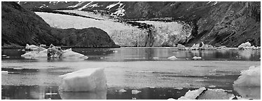 Glacier front and inlet. Glacier Bay National Park (Panoramic black and white)