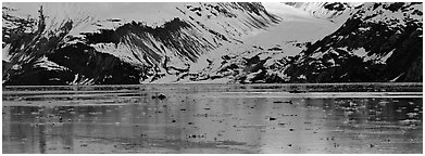 Snowy slopes reflected in ice-chocked waters. Glacier Bay National Park (Panoramic black and white)