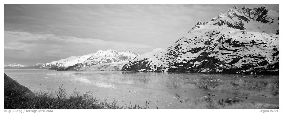 Snowy mountains rising above fjord. Glacier Bay National Park (black and white)
