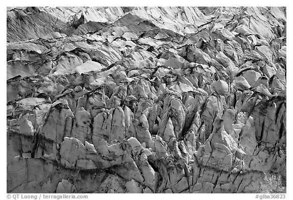 Crevasses and seracs of Reid Glacier. Glacier Bay National Park (black and white)