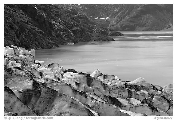 Lamplugh glacier and turquoise bay waters. Glacier Bay National Park (black and white)