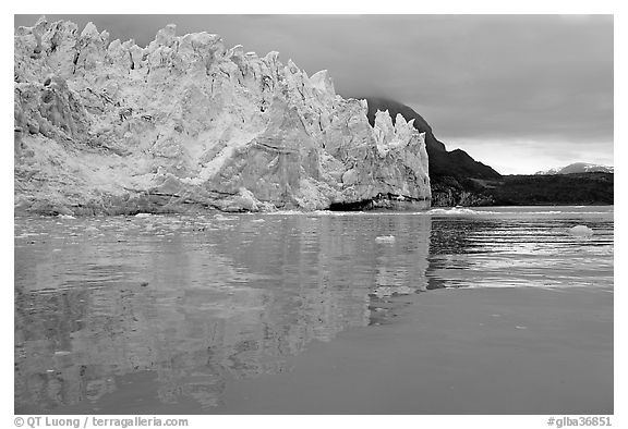 Margerie Glacier reflected in Tarr Inlet. Glacier Bay National Park (black and white)