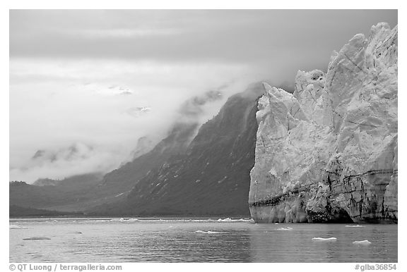 Margerie Glacier and foggy mountains surrounding Tarr Inlet. Glacier Bay National Park (black and white)