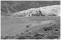 Beach and Reid Glacier. Glacier Bay National Park, Alaska, USA. (black and white)
