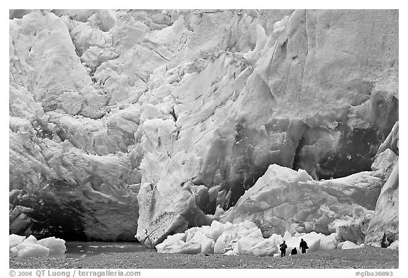 People at the base of Reid Glacier. Glacier Bay National Park (black and white)