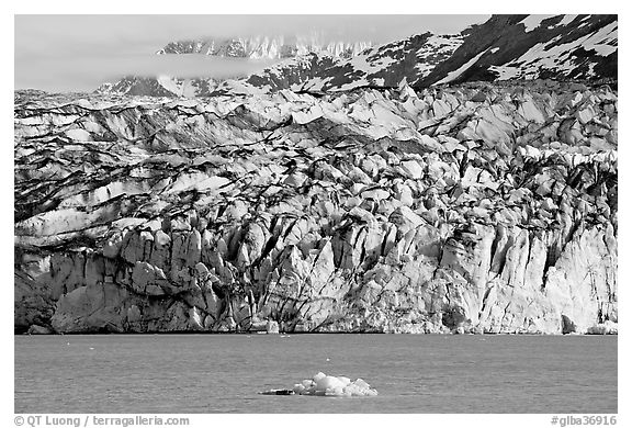 Iceberg and ice face of Lamplugh glacier. Glacier Bay National Park (black and white)