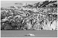 Iceberg and ice face of Lamplugh glacier. Glacier Bay National Park, Alaska, USA. (black and white)