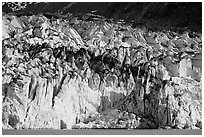 Tidewater ice front of Lamplugh glacier. Glacier Bay National Park, Alaska, USA. (black and white)