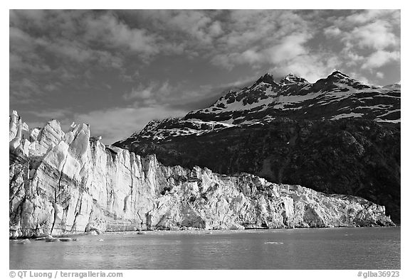 Lamplugh glacier and Mt Cooper, late afternoon. Glacier Bay National Park (black and white)