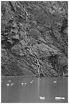 Waterfall, Tarr Inlet. Glacier Bay National Park, Alaska, USA. (black and white)