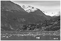 Ice-chocked cove in Tarr Inlet. Glacier Bay National Park ( black and white)