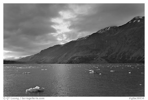 Icebergs in Tarr Inlet, sunset. Glacier Bay National Park (black and white)