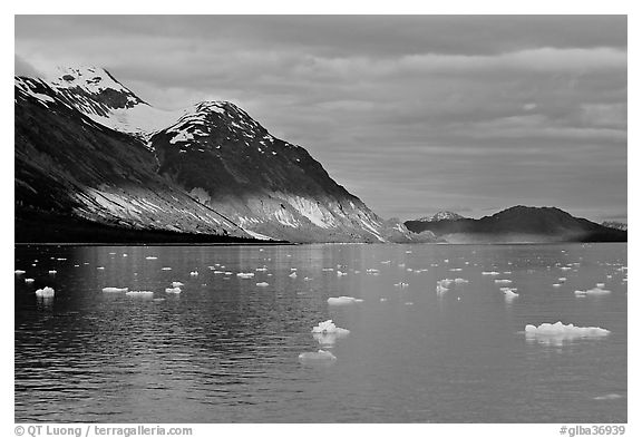 Tarr Inlet and icebergs with the last light of sunset. Glacier Bay National Park (black and white)