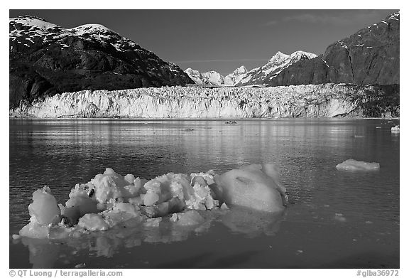 Iceberg, wide front of Margerie Glacier and Fairweather range. Glacier Bay National Park (black and white)