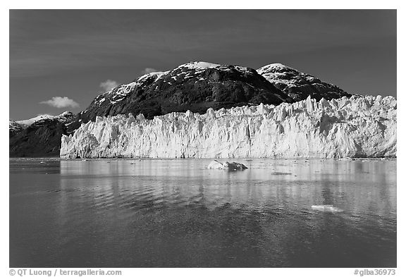 Wide front of Margerie Glacier and Tarr Inlet. Glacier Bay National Park (black and white)