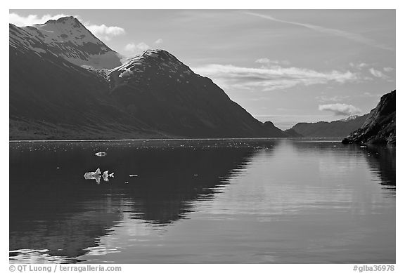 View looking out Tarr Inlet in the morning. Glacier Bay National Park (black and white)