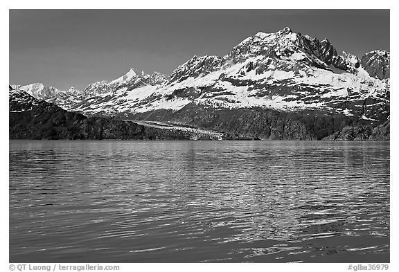Mount Cooper and Lamplugh Glacier, reflected in rippled waters of West Arm, morning. Glacier Bay National Park (black and white)