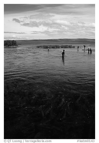 Fishermen in the Brooks river. Katmai National Park (black and white)