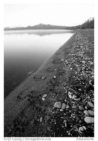 Bear tracks on the shore of Naknek lake. Katmai National Park (black and white)
