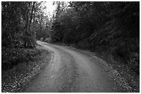Road between Brooks Camp and Lake Brooks. Katmai National Park ( black and white)