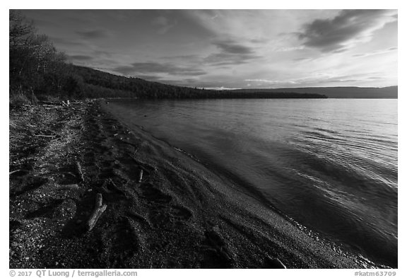 Huge bear footprints on shore of Naknek Lake. Katmai National Park (black and white)