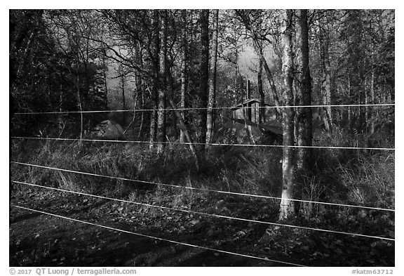 Brooks Camp campground surrounded with electric fence. Katmai National Park (black and white)