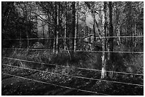 Brooks Camp campground surrounded with electric fence. Katmai National Park ( black and white)