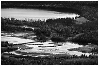 Footbridge over Brooks River from above. Katmai National Park ( black and white)